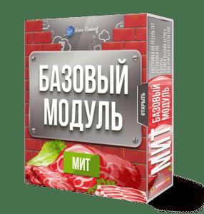 МИТ - базовый модуль